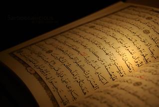 شهر رمضان الذي أنزل فيه 10