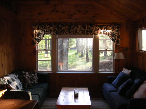 trees lake window pine cabin view lodging cottage maine rental bee kezar sofas centerlovell