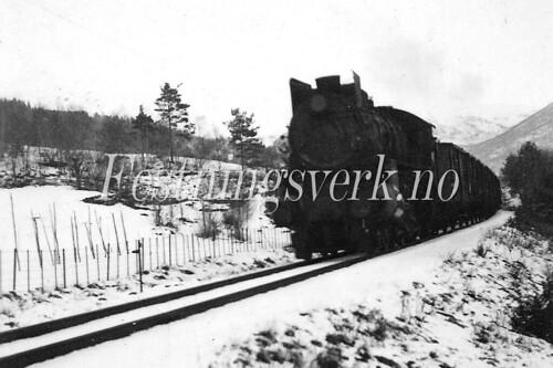 Voss Bergen distriktet (1206)