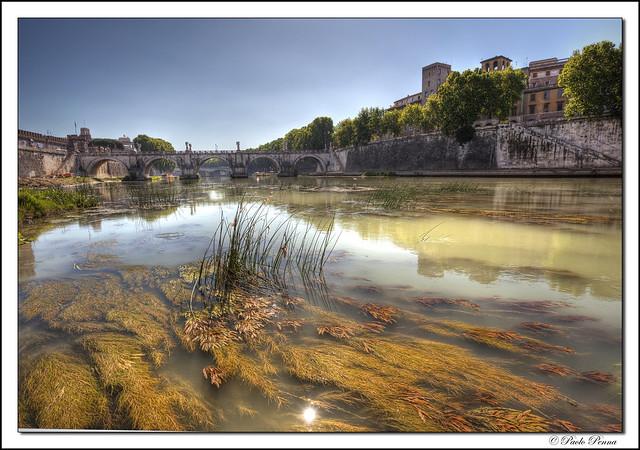 Tiber River, Roma Italia.  [Explore]