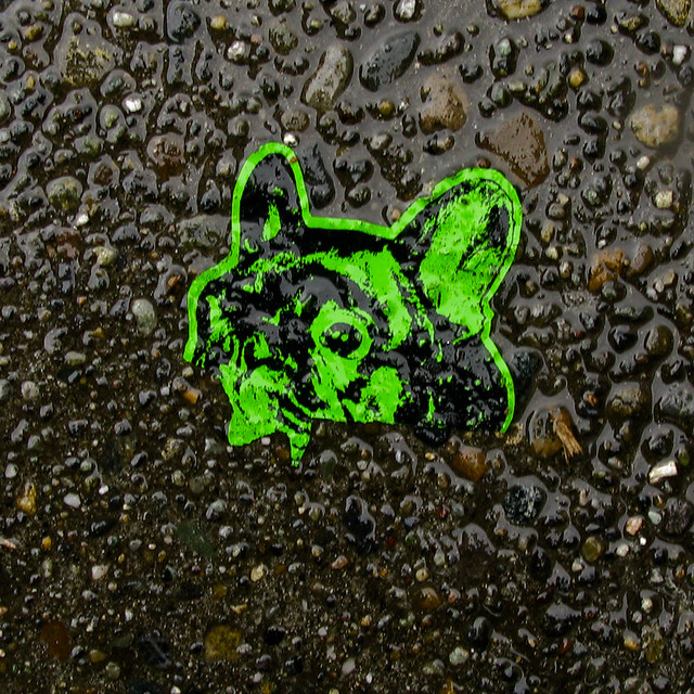 Green Dog Disappearing