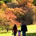 Arboretum Photostroll - Oct 17, 2008