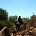 Sicilian Man riding a pack horse, Lo Zingaro Nature Reserve, Sicily