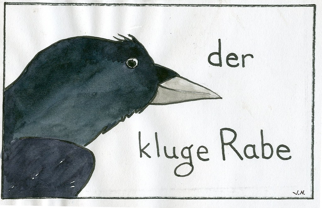 kluger Rabe