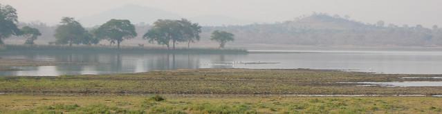 Vwaza Marsh (Malawi), 4-Oct-08