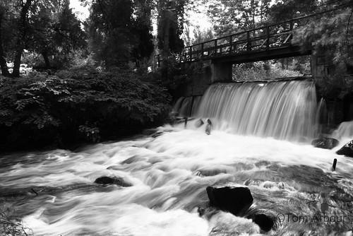 bridge water canon waterfall stream maine bridgton xti invasiveplantfallsinbridgtonmaine
