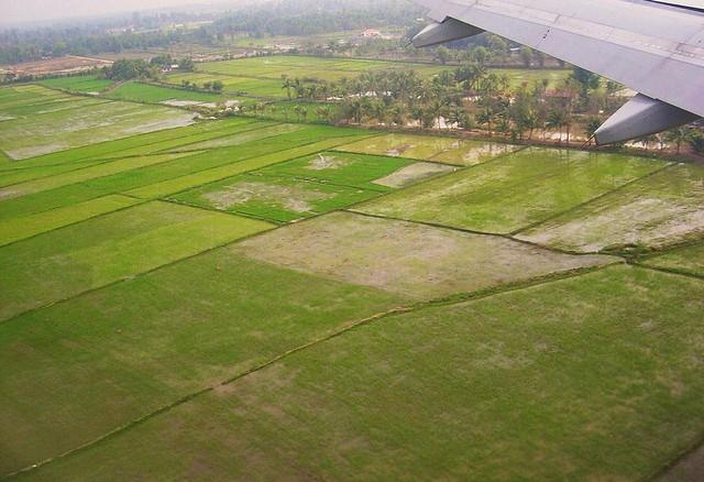 Laos , Anflug über Reisfeldern auf Vientiane, der Hauptstadt von Laos
