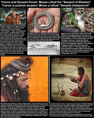 """Trance and Serpent Power- Moses Lifted the """"Serpent of Wisdom"""" 
