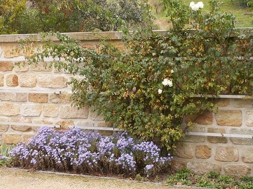 Sei still, du sollst nicht traurig sein, ich laß die Saiten an der Weinbergmauer klingen, ich will von Blumen und Parzival dir singen bis um Mitternacht in bunten phantastischen Bildern 046