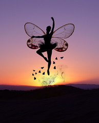 El amanecer de las mariposas
