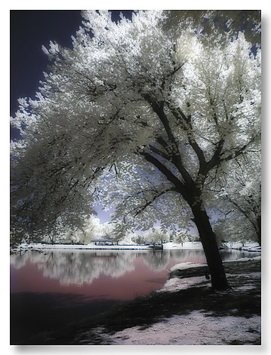 Enid Oklahoma Infrared, Meadow Lake Park ...