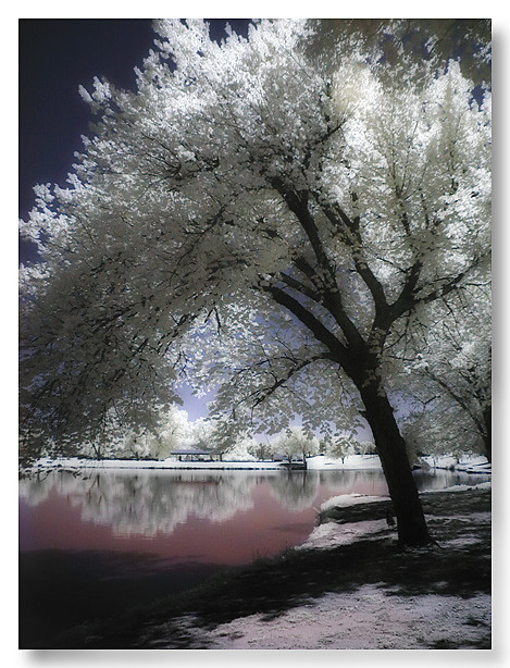 Enid Oklahoma Infrared, Meadow Lake Park ...