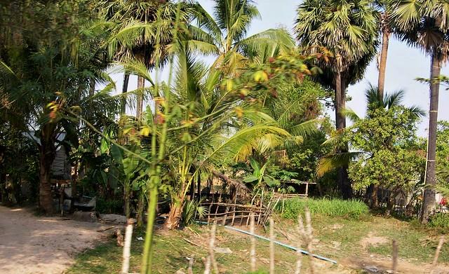Kambodscha, Auf dem Land bei einfachen Bauern - 2