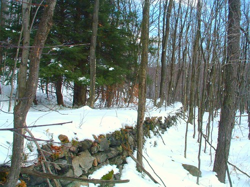 road winter wild mountains stone wall creek highlands pennsylvania small hunting tram clear shade area laurel scenes gmae