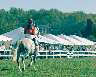 Montpelier Hunt Races 53 | by eschneider
