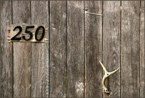 250 | by Jerzy Durczak