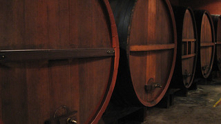 Wine Casks @ Houghton Winery   by sridgway