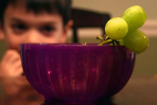 grapewatch | by woodleywonderworks