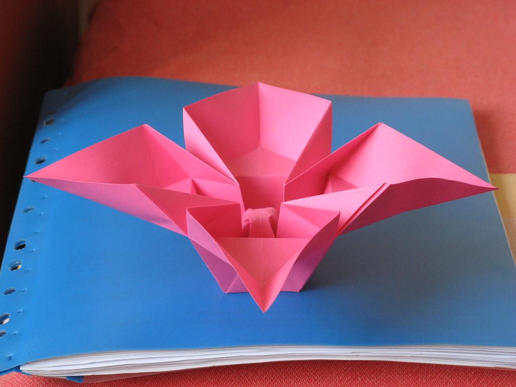 Fiori 4 Petali.Fiore A Quattro Petali Flower With 4 Petals Tecnica Ori Flickr