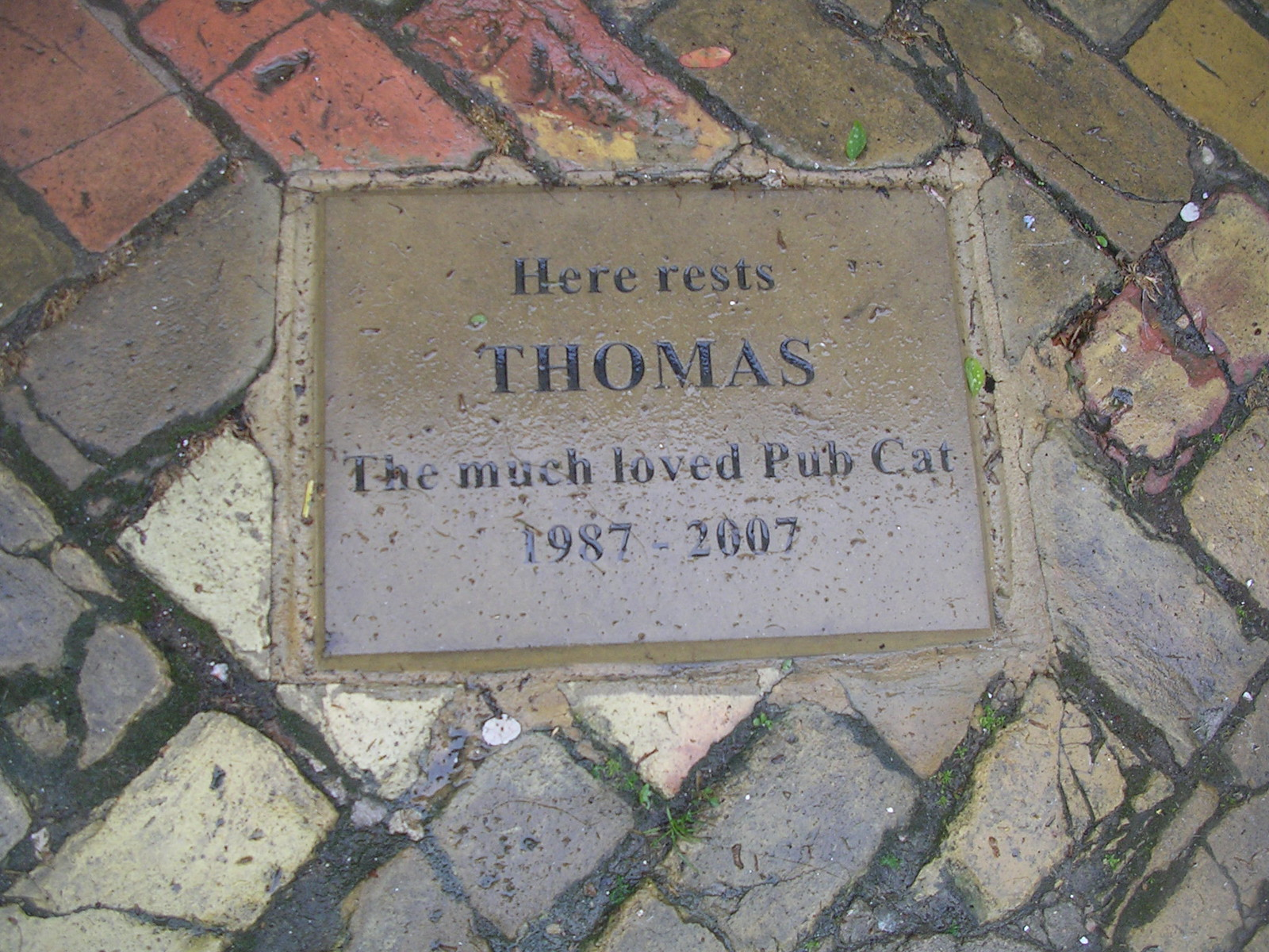 Plaque at the Five Bells Wakes Colne to Bures You have to walk over Thomas to get in the pub