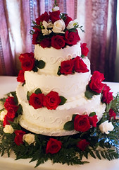 The cake.  Originally uploaded by carpeicthus.