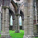 Tintern Abbey, Monmouthshire, Wales, 6 October 2005 by PhillipC