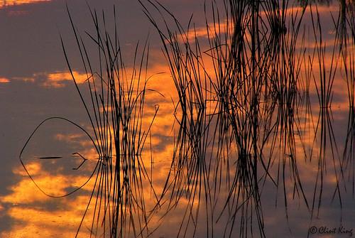 nature sunrise landscape hood forthood fthood clintking