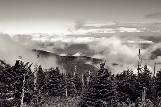 Greetings from Mt. Mitchell