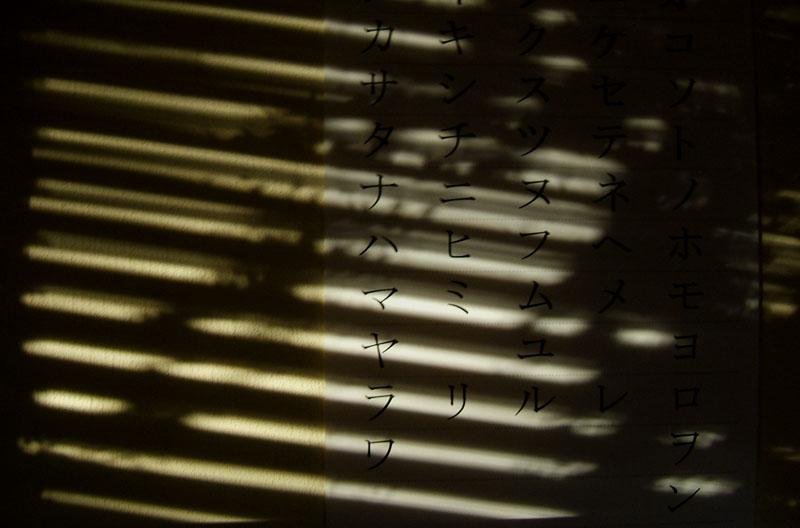 sunlight hits the Gojūon