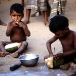 Arugambay - Sri Lanka - 1983(13)