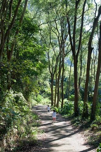The Ninety-Nine Peaks Trail | by ToddinNantou