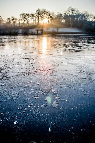 winter hiver chatelaudren glace ice gelé water froid janvier 2017 nikon d3200 1855mm sunrise tree sun soleil lever cotes armor bzh bretagne breizh frozen