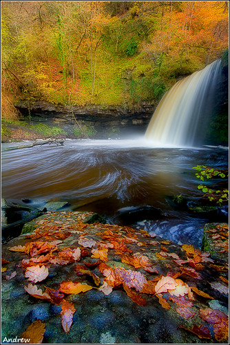 longexposure morning autumn wild people wet water rain river geotagged flow waterfall focus soft tripod bubbles full swirls mad effect meet orton wfc goodfun pontneddfechan circularpolariser canonefs1022mmf3545usm rhaeadr ystradfellte drownedrats earlystart waterfallwalk explored rhaeadrau valeofneath ladyfalls explre leavestrees welshflickrcymru canoneos40d afonpyrddin sgwdgwladys andrewwilliamdavies soakedthrough geo:lon=3600383 geo:lat=51771399