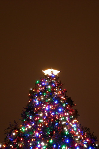 Capitol Christmas Tree | by Kevin H.