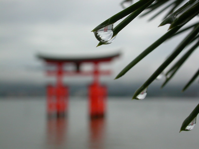 Miyajima Torii on a rainy morning