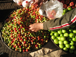 Choosing Vietnamese cherries | by Tym
