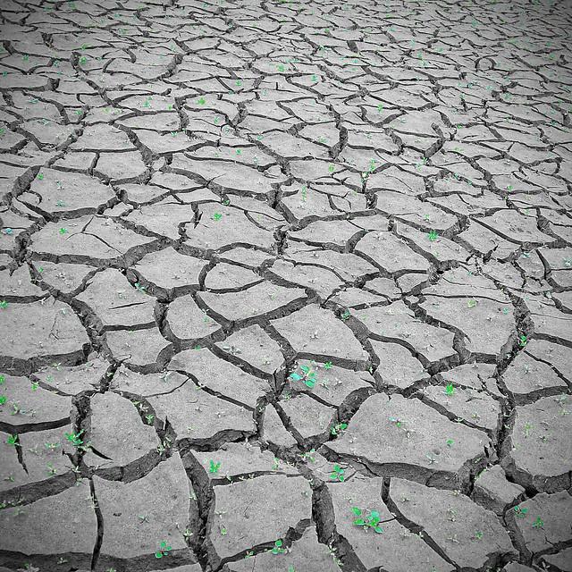 Dry...