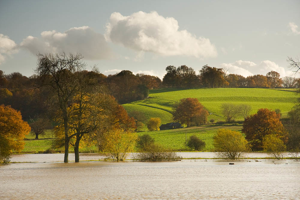 The Medway near Penshurst Recent heavy rain has resulted in a very full river