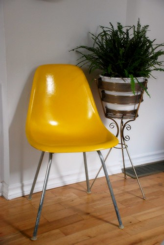 Eames shell chair | by kimhaseightcats