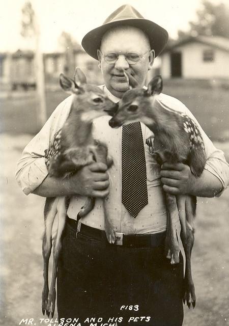 Alpena MI Tollson and his Pet Deer and Unusual Deer Farm RPPC