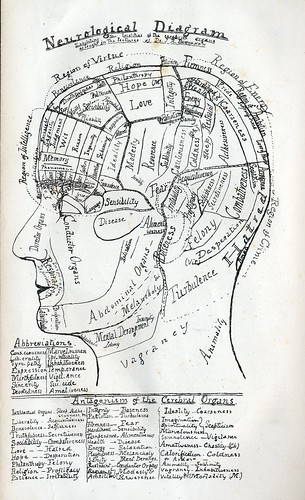Neurological Diagram | by Hatchibombotar