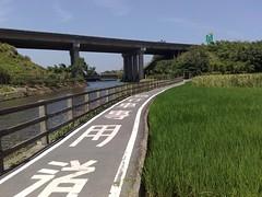龍潭自行車