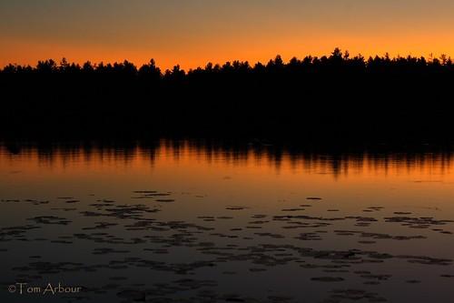 lake reflection water twilight pond dusk horizonlittlepondtwilight