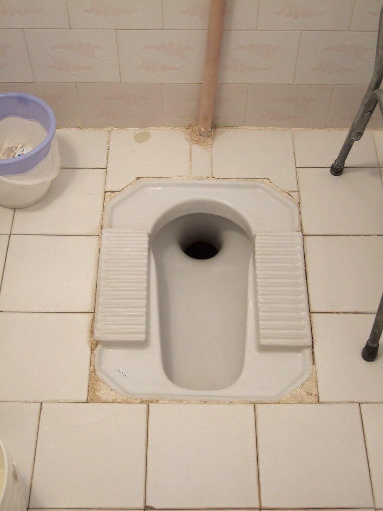 Miraculous Squat Toilet 90 Toilets In Iran Are Like This Style It W Machost Co Dining Chair Design Ideas Machostcouk