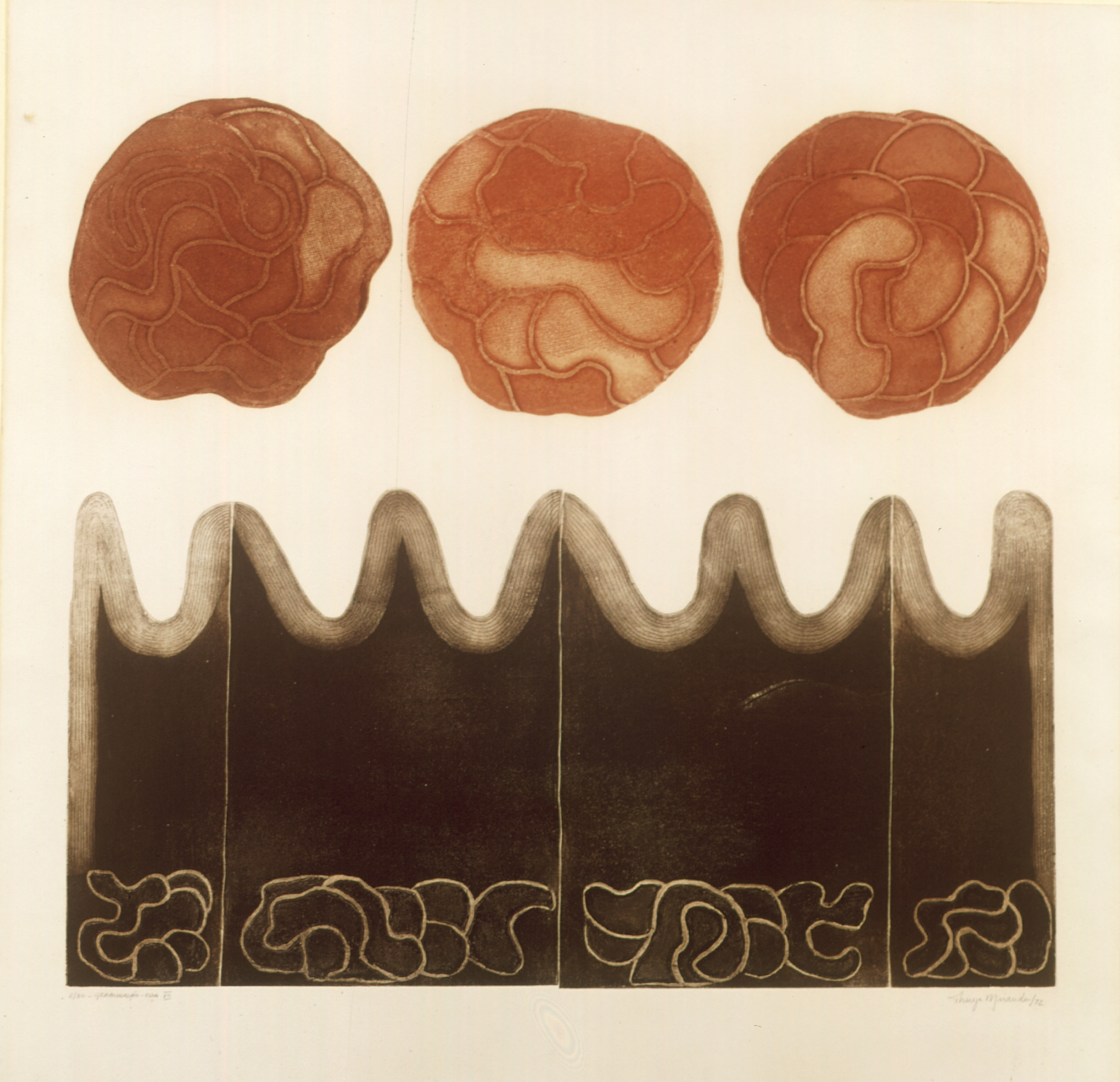 Germinação da vida VII  Autor: Thereza Miranda Ano: 1972  Técnica: Calcografia. Água-tinta e Água-forte (8/30)  Dimensões: 54cm x 59cm