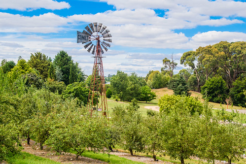 orangebotanicalgardens nsw fruittrees orangensw landscape inland countrside centralwestnsw australia flora trees windmill rural orchard newsouthwales clouds