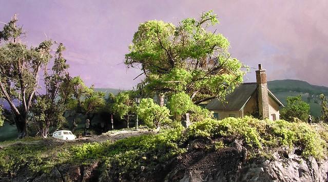 Trees at Swanhurst