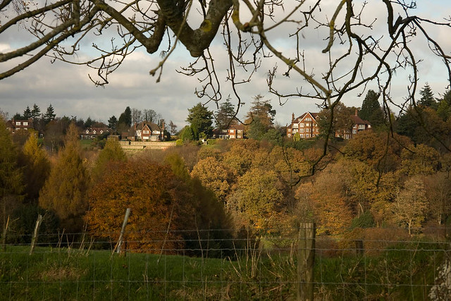 Haslemere from Valewood Farm
