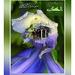 Khuajah Gharib Nawaz - Monthly Al Malangia Mag. Ttile Page