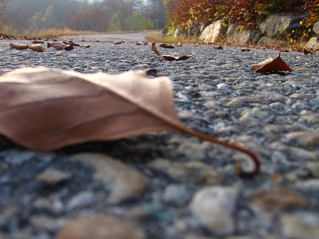 autunno a Coazze